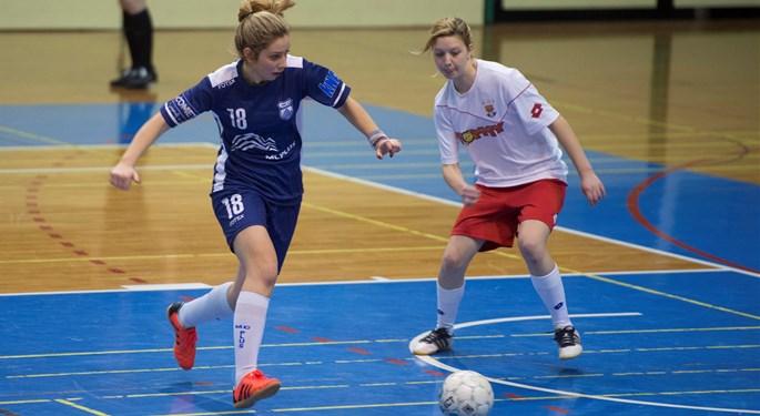 Video: U Pisarovini odigran prvi turnir HMNLŽ