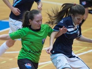 Treći turnir 1. HMNLŽ 26. i 27. siječnja u Sisku